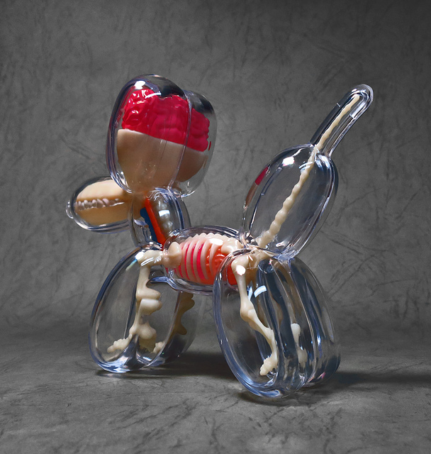 15.jpg - 4D MASTER BALLOON DOG ANATOMY