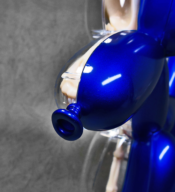 39.jpg - 4D MASTER BALLOON DOG ANATOMY