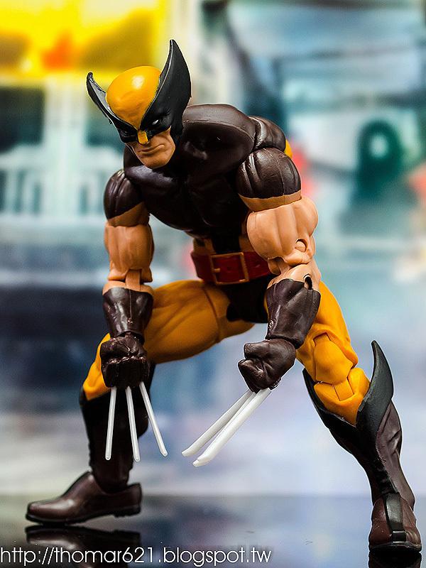 玩具心得:HASBRO MARVEL LEGENDS 2016 X-MEN SERIES WOLVERINE 金鋼狼